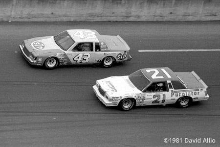Daytona International Speedway 1981 Richard Petty Neil Bonnett