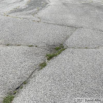 Lafayette Stadium Speedway Lafayette Indiana short track paved oval 2021
